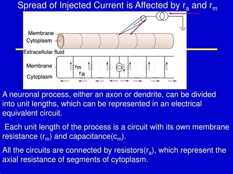 find the equivalent resistance ra of the resistor network find the equivalent resistance ra of the resistor network 28 images all about circuit