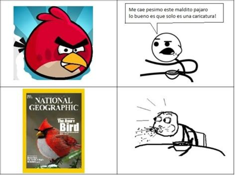Angry Birds Memes - angry birds meme