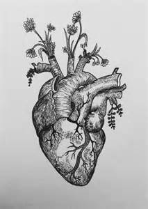 black tattoo anatomical heart google search black and