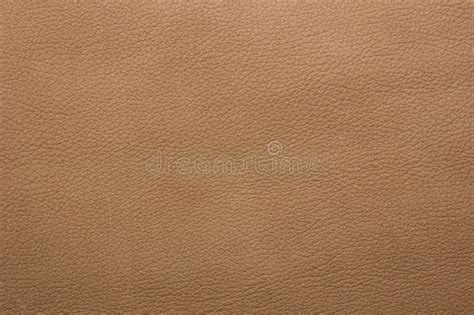 light leather light brown leather background stock image image of