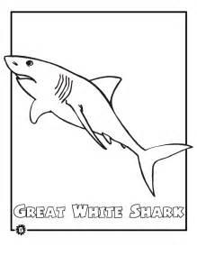 what color are sharks printable shark coloring pages coloring home