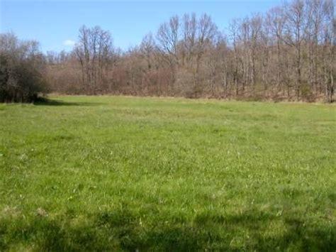 imagenes prados verdes prados verdes quintanilla de combarros