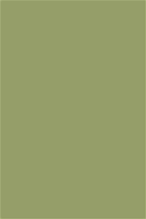 colours olive farrow
