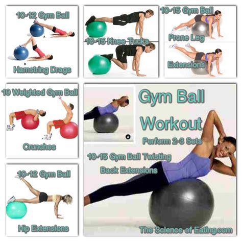 gym ball size cm   pump sastimedicinecom