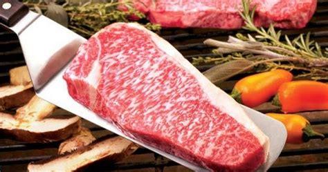 Bibit Sapi Wagyu sapi wagyu penghasil daging premium untuk pasar kelas atas www agrinak