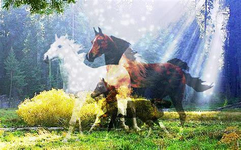 ghosts  horses    dream dreams