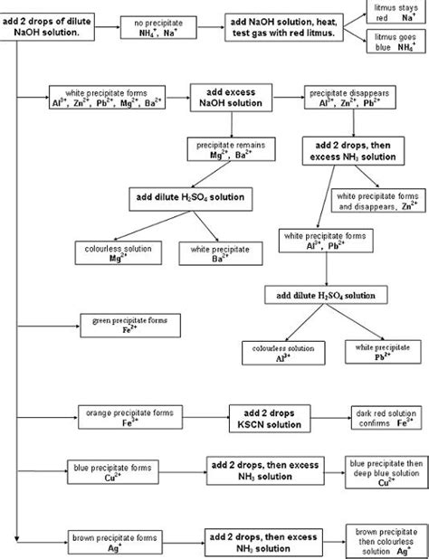 qualitative analysis lab flowchart qualitative analysis flow chart domai vera