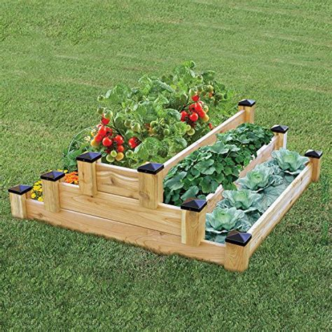 how to plant strawberries in a raised bed growing strawberries in raised beds for a bountiful