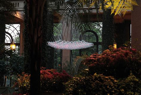 Longwood Gardens Light Show by Bruce Munro Light At Longwood Gardens