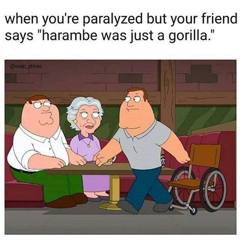 Joe Swanson Meme - when you re paralyzed and your friend says quot harambe was