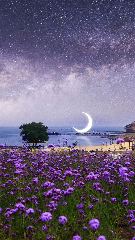 wallpaper surreal moon scenery purple flowers seascape