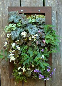 1000 images about vertical gardens on