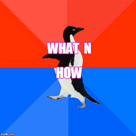 Meme Generator Penguin - socially awesome awkward penguin meme imgflip