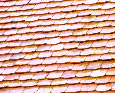 cost of meduim span roofing sheet in cost to install shingle roof estimates and prices at fixr