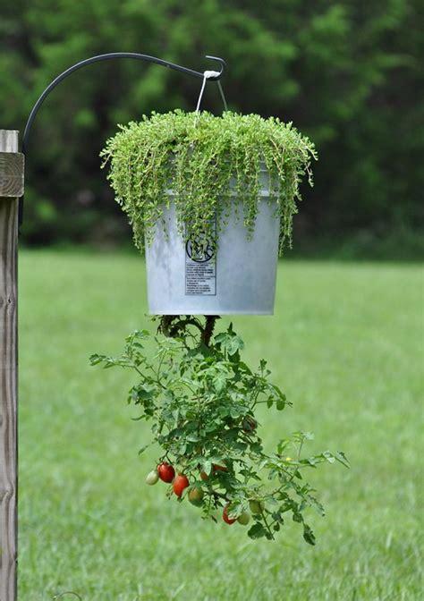 diy upside  planter ideas balcony garden web