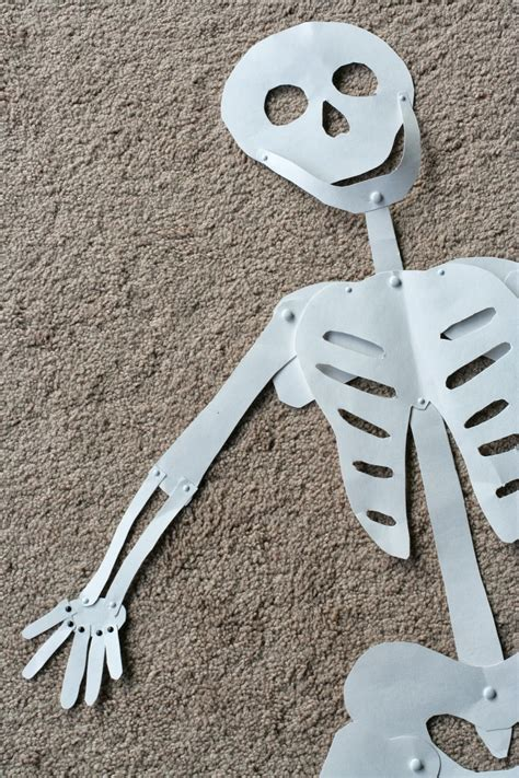 skeleton diy diy decoration sized skeleton