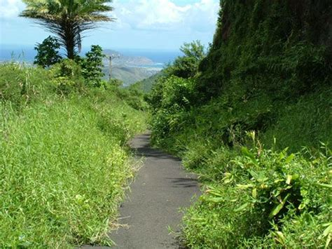 section 8 oahu 17 best images about windward oahu hawaii on pinterest