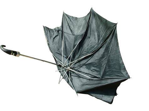 umbrella in the wind broken umbrella broken hearts books book review umbrella by will self npr