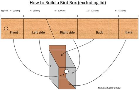 how to build a bird box nicholas gates blog