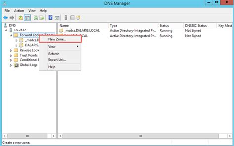 Server Lookup How To Create A Forward Lookup Zone In Microsoft Dns Server 2012 R2 Dalaris Tech