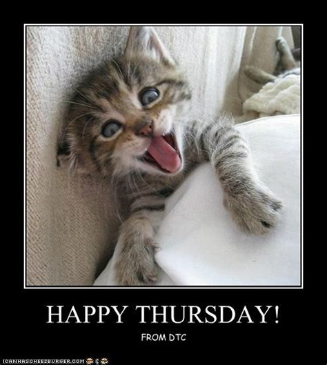 Thursday Meme - happy thursday pictures photos and images for facebook