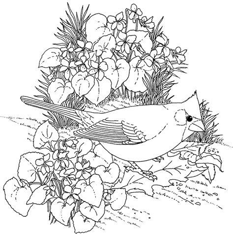 heart  compassion  winter birds