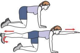 3 Exercices Pour Se Muscler Le Dos Kinesitherapie24 Dessin De Gym Facile A Faire L