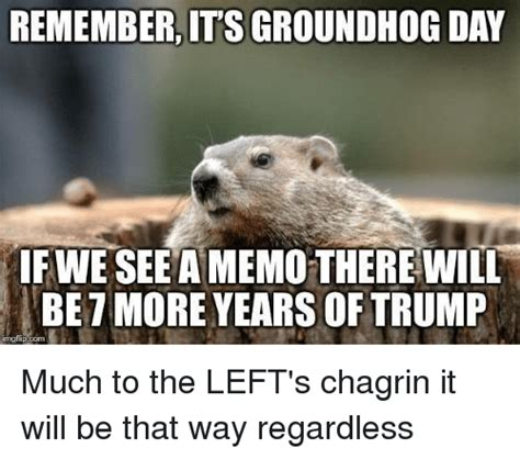 groundhog day years remember lt s groundhog day fwe seeamemo therewill be7