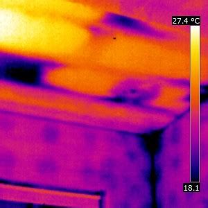 thermal imaging heat and energy loss survey