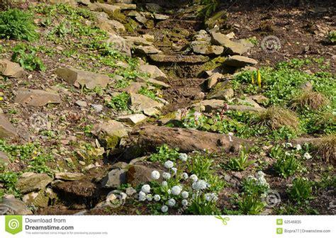 small rock garden images a small rock garden stock photo image 52546835