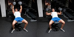 hammer dumbbell bench press hammer grip incline dumbbell bench press weight training