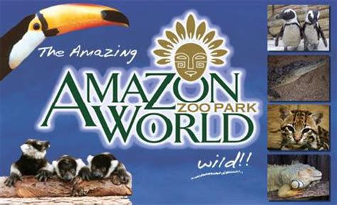 amazon zoo amazon world zoo park wight info isle of wight
