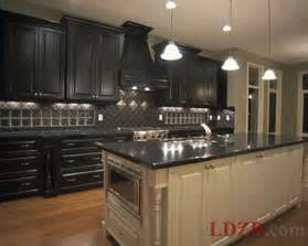 Black Cabinet Kitchens Traditional Black Kitchen Cabinets Home Design And Ideas