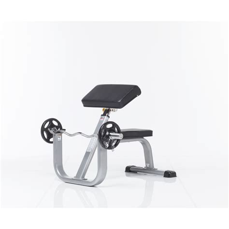 seated curl bench tuff stuff seated arm curl bench gym source