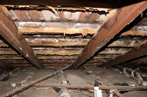 Timber Ceiling Battens by Chemical Delignification Professional Advice