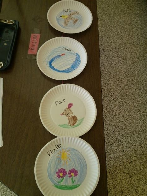 Paper Plate Food Crafts - 17 best images about science food chain on