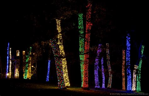 amazing outdoor lights for christmas at longwood gardens