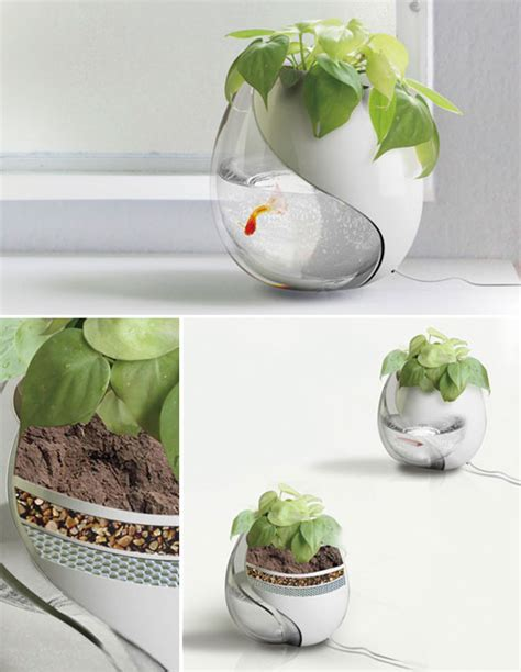 Fish Tank Planter by 13 Fish Bowl And Aquarium Design For Fish Lover Design Swan