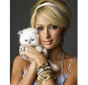 Paris Hilton Hairstyle 2011  Car Twet