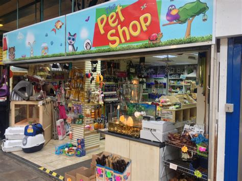puppy shoo the pet shop in kirkgate market leeds independent leeds