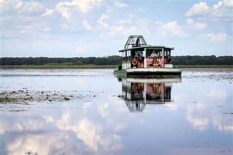 myakka river boat tour 1000 images about sarasota area on pinterest state