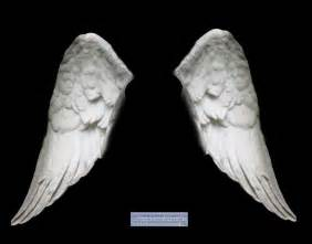 Wings And More Wings White 02 By Elisafox Stock On Deviantart