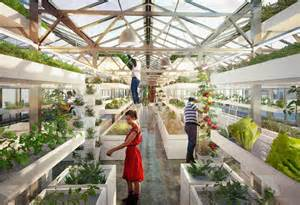 Public Works: Urban Farming in Your Own Backyard