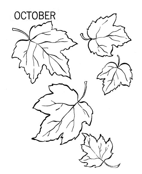 Printable Coloring Pages Autumn Leaves | free printable leaf coloring pages for kids