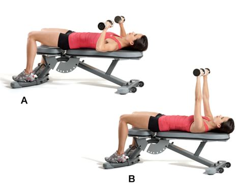 bench press with bar or dumbbells total body strength circuit workout gym equipment
