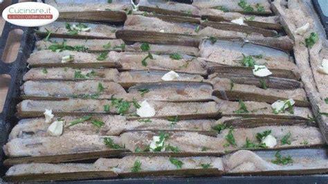 cucinare i cannolicchi cannolicchi gratinati cucinare it
