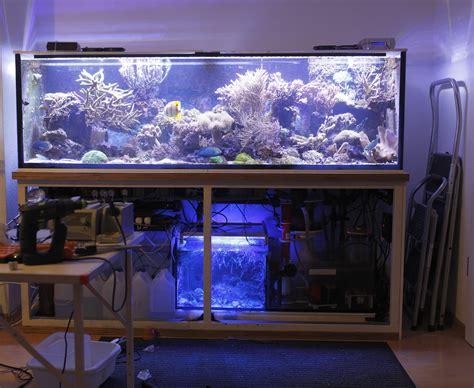 led beleuchtung für aquarium bauen decor len
