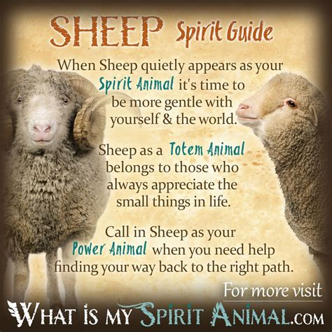 Madonna Is Not A Friend To The Sheep by Sheep Ram Symbolism Meaning Spirit Totem Power Animal