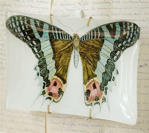 Butterfly Decoupage - bird butterfly decoupage trays pottery barn