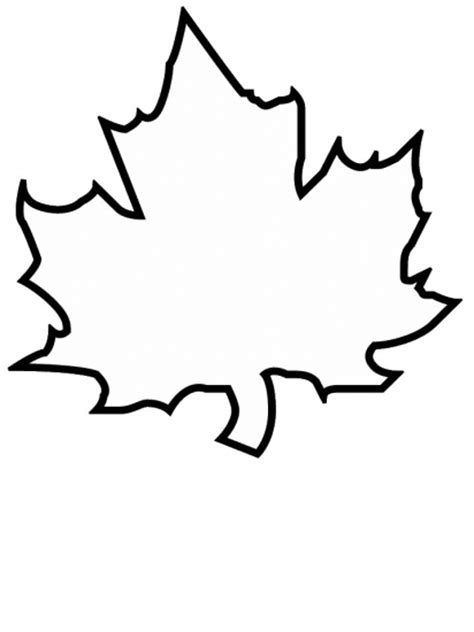 coloring pages leaf shapes free coloring pages